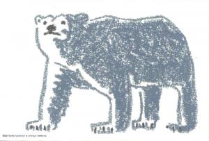 祖敷白クマ