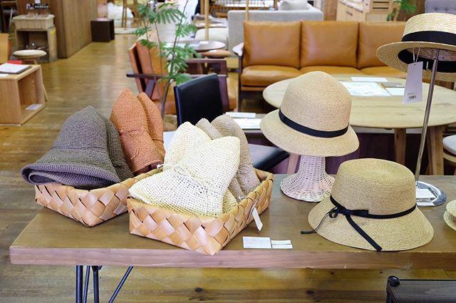 .今年の夏の帽子とかごバッグを展示しました!クラスカの新作・ペーパーブレードハットやキッズ麦わら帽子、田中帽子店のカンカン帽、毎年人気の和紙の帽子など、たくさんご用意してします。ぜひご覧ください〜〜.#デイリーズ#デイリーズカフェ#三鷹#三鷹カフェ#ハミングバード#hummingbird#田中帽子店#和紙の帽子#クラスカ#claska#ペーパーブレードハット#洗える帽子#ootd#夏コーデ#夏準備#帽子